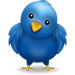 Follow Us On Twitter - Devereux Colorado
